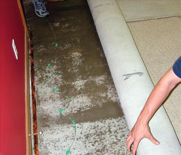 Water Damage Drying Out Your Bedroom Carpet After Water Damage In Lafayette