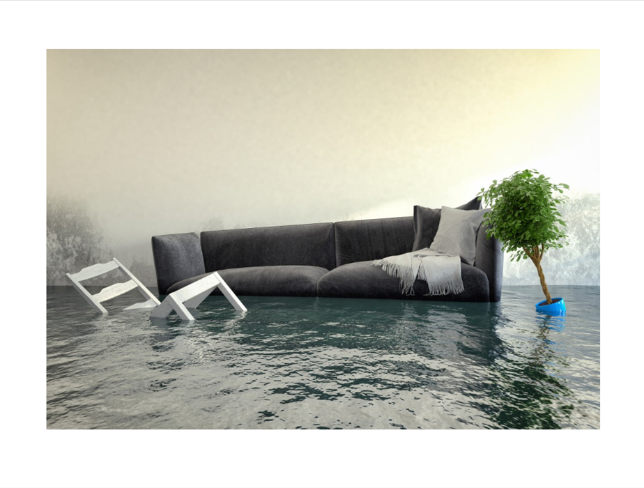 Grey sofa, potted plant, and dining chair floating in water damaged home