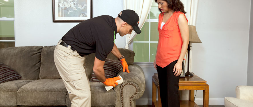 Lafayette, IN carpet upholstery cleaning